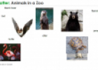 Animals in a zoo | Recurso educativo 59806