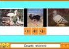 Els animals vertebrats | Recurso educativo 3562