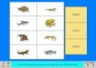 Els animals vertebrats II | Recurso educativo 4418